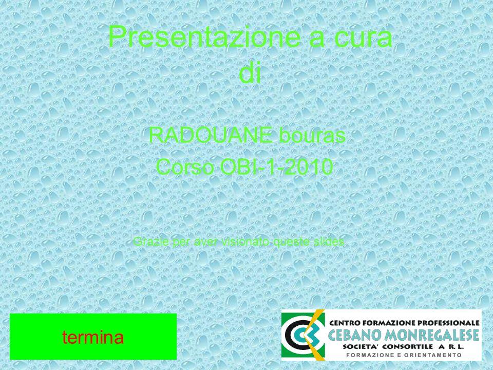 Presentazione a cura di RADOUANE bouras Corso OBI-1-2010 Grazie per aver visionato queste slides termina