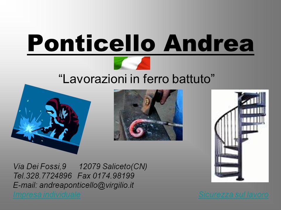 Ponticello Andrea Lavorazioni in ferro battuto Via Dei Fossi,9 12079 Saliceto(CN) Tel.328.7724896 Fax 0174.98199 E-mail: andreaponticello@virgilio.it
