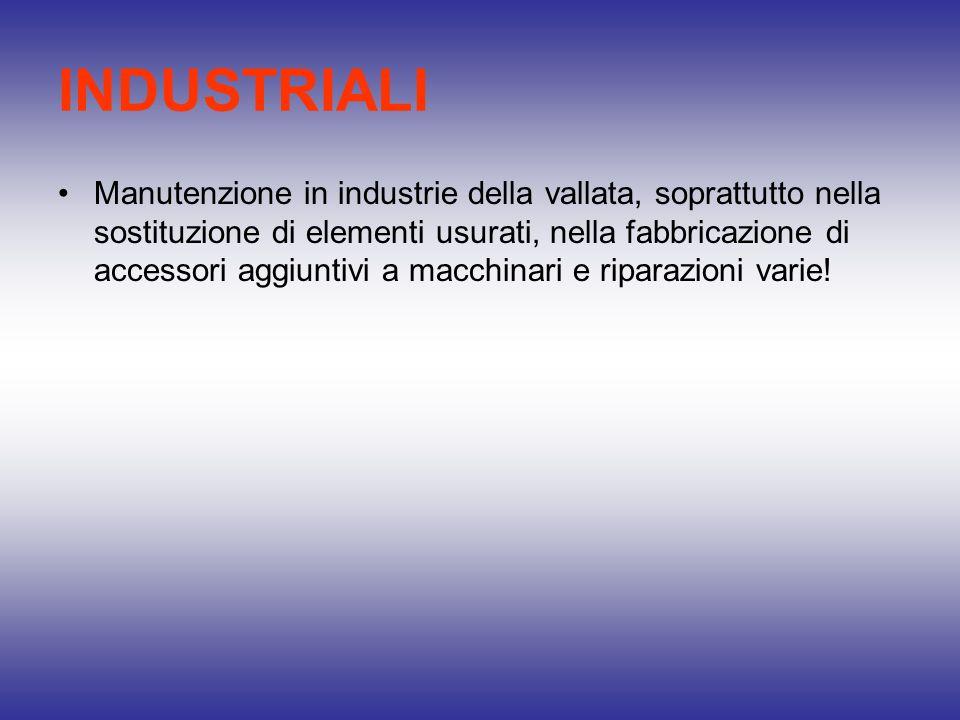 INDUSTRIALI Manutenzione in industrie della vallata, soprattutto nella sostituzione di elementi usurati, nella fabbricazione di accessori aggiuntivi a