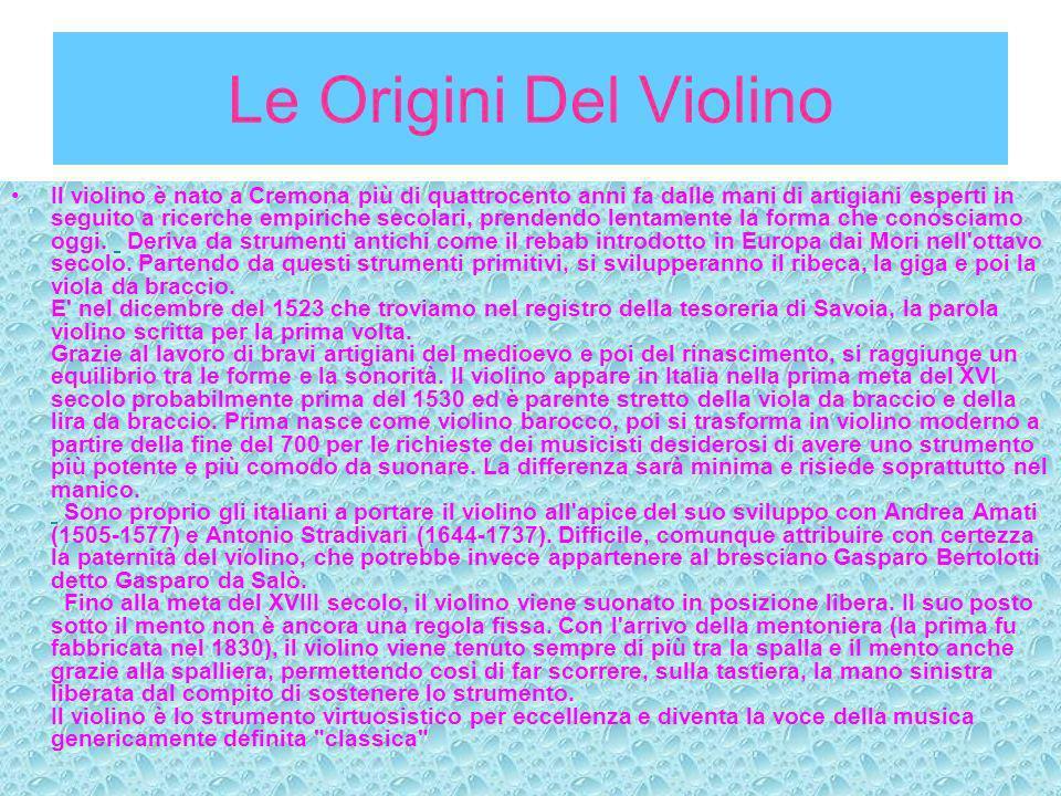 DESCRIZIONE DEL VIOLINO Il violino è composto da: Tavola armonica o Cassa armonica, di legno, avente una forma molto caratteristica.