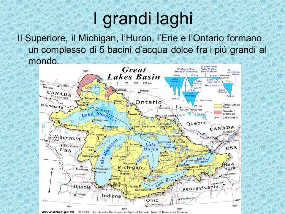 I grandi laghi Il Superiore, il Michigan, lHuron, lErie e lOntario formano un complesso di 5 bacini dacqua dolce fra i più grandi al mondo.