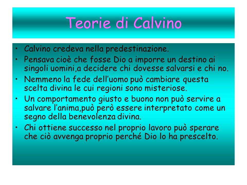 Teorie di Calvino Calvino credeva nella predestinazione.