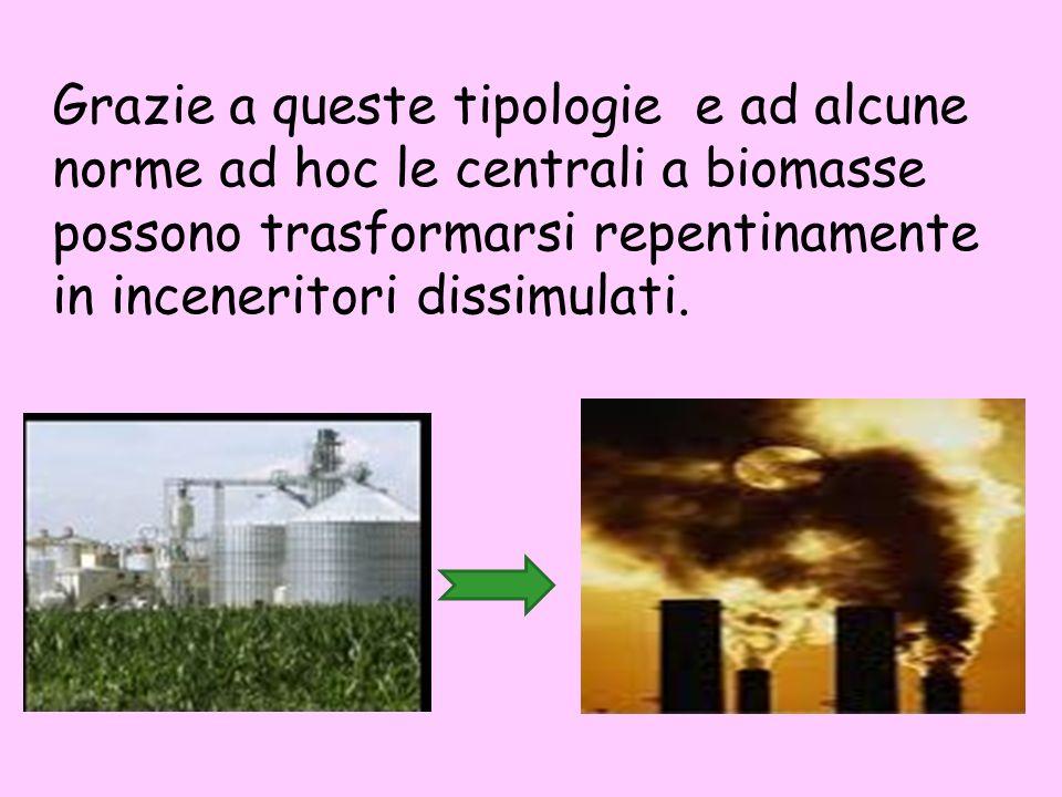 Grazie a queste tipologie e ad alcune norme ad hoc le centrali a biomasse possono trasformarsi repentinamente in inceneritori dissimulati.