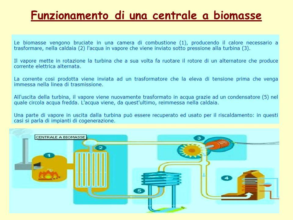 Funzionamento di una centrale a biomasse