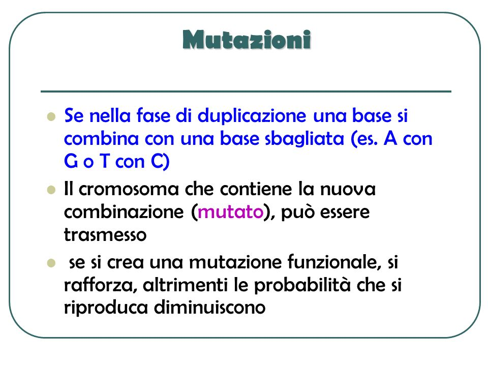 Mutazioni Se nella fase di duplicazione una base si combina con una base sbagliata (es. A con G o T con C) Il cromosoma che contiene la nuova combinaz