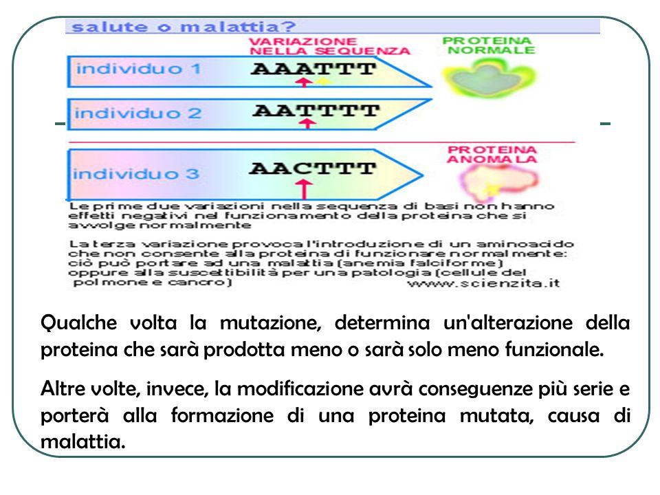 Qualche volta la mutazione, determina un'alterazione della proteina che sarà prodotta meno o sarà solo meno funzionale. Altre volte, invece, la modifi