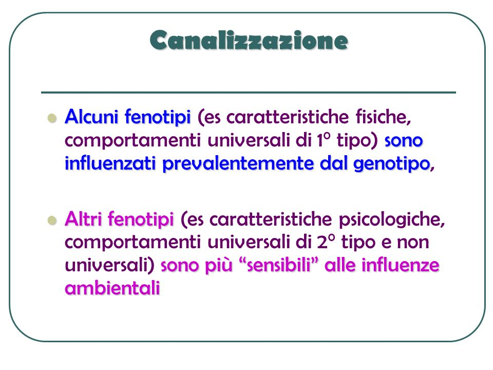 Canalizzazione Alcuni fenotipi sono influenzati prevalentemente dal genotipo Alcuni fenotipi (es caratteristiche fisiche, comportamenti universali di