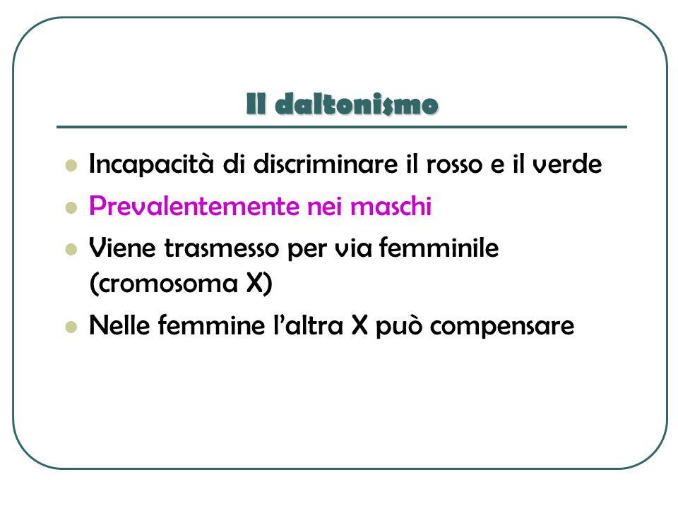 Il daltonismo Incapacità di discriminare il rosso e il verde Prevalentemente nei maschi Viene trasmesso per via femminile (cromosoma X) Nelle femmine