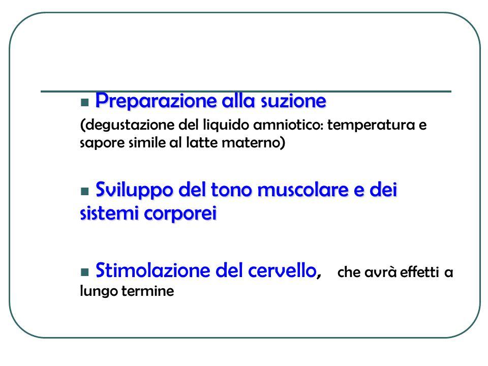 Preparazione alla suzione Preparazione alla suzione (degustazione del liquido amniotico: temperatura e sapore simile al latte materno) Sviluppo del to