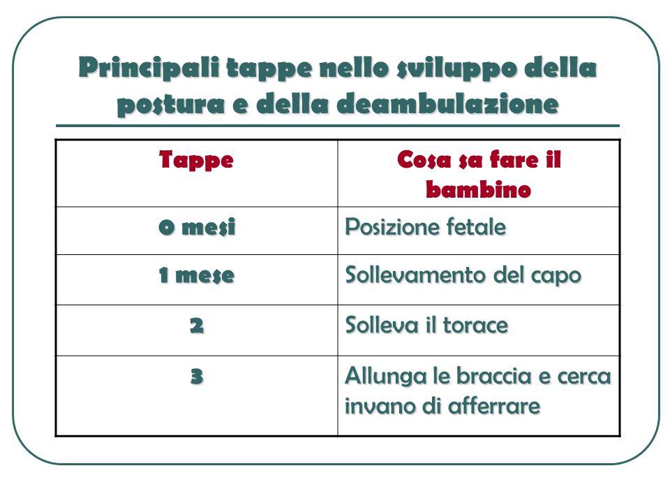 Principali tappe nello sviluppo della postura e della deambulazione TappeCosa sa fare il bambino 0 mesi Posizione fetale 1 mese Sollevamento del capo