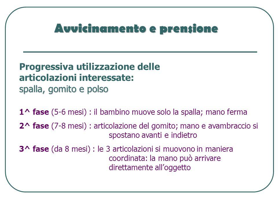 Avvicinamento e prensione Progressiva utilizzazione delle articolazioni interessate: spalla, gomito e polso 1^ fase (5-6 mesi) : il bambino muove solo