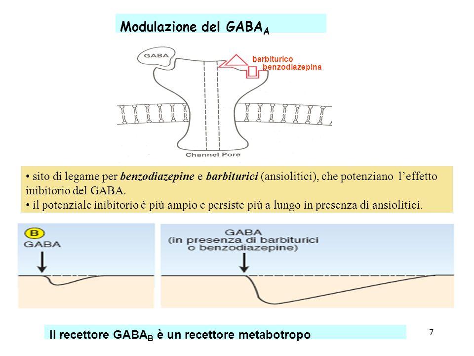 Sinapsi_47 Modulazione del GABA A sito di legame per benzodiazepine e barbiturici (ansiolitici), che potenziano leffetto inibitorio del GABA. il poten