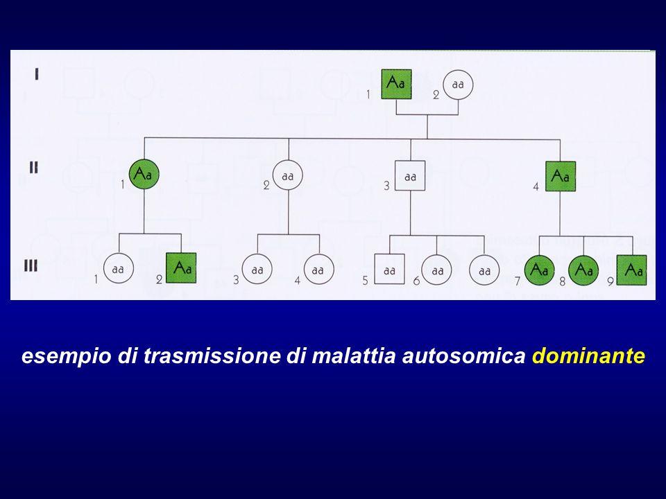 esempio di trasmissione di malattia autosomica dominante