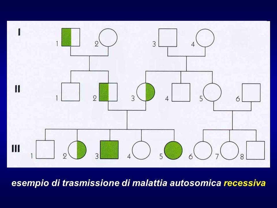 esempio di trasmissione di malattia autosomica recessiva (consanguineità)