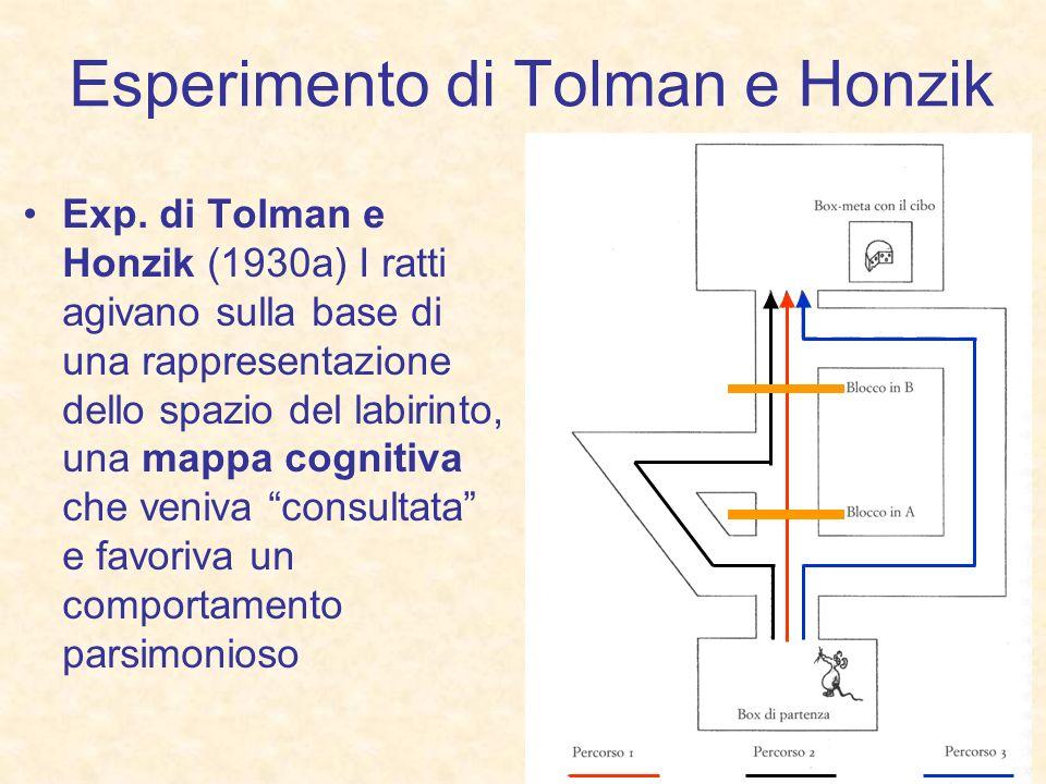 Esperimento di Tolman e Honzik Exp. di Tolman e Honzik (1930a) I ratti agivano sulla base di una rappresentazione dello spazio del labirinto, una mapp