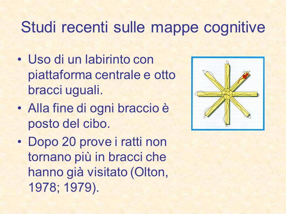 Studi recenti sulle mappe cognitive Uso di un labirinto con piattaforma centrale e otto bracci uguali. Alla fine di ogni braccio è posto del cibo. Dop