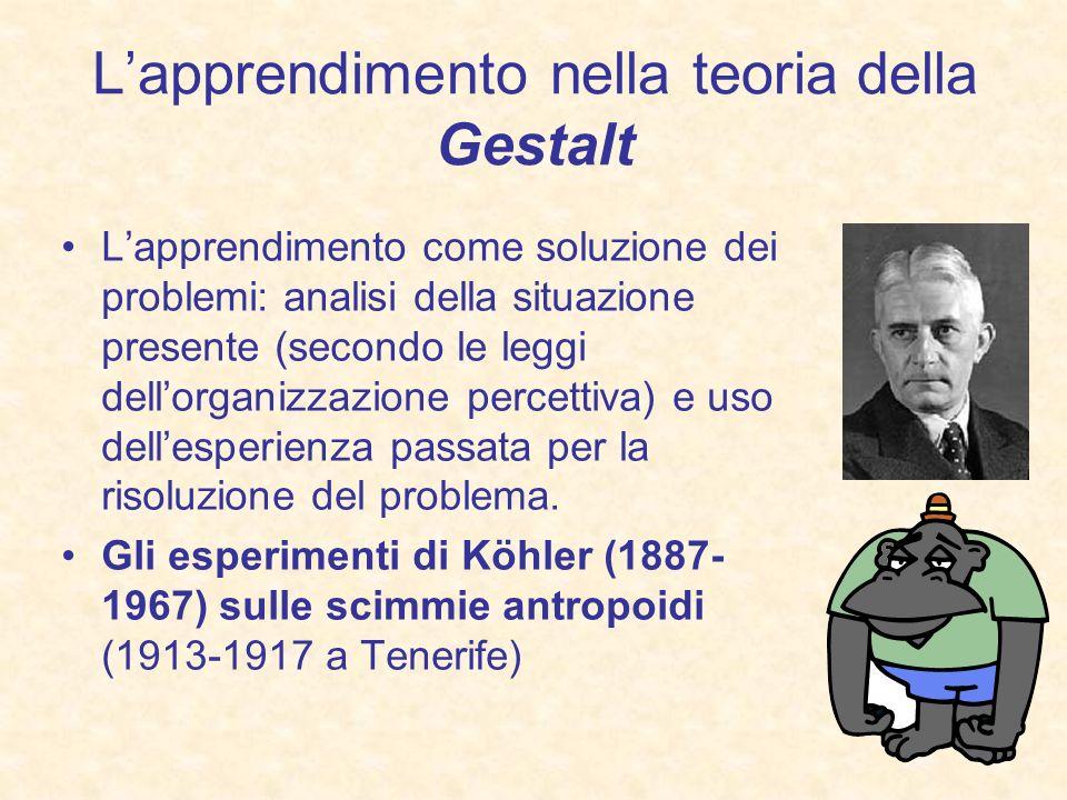 Lapprendimento nella teoria della Gestalt Lapprendimento come soluzione dei problemi: analisi della situazione presente (secondo le leggi dellorganizz