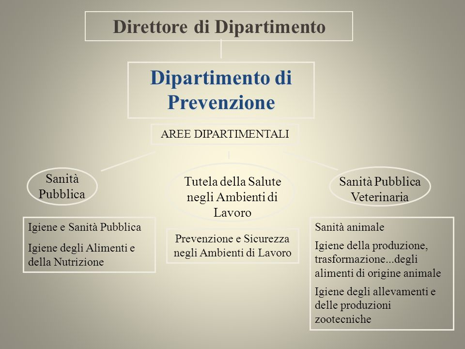Igiene e Sanità Pubblica Igiene degli Alimenti e della Nutrizione Dipartimento di Prevenzione Direttore di Dipartimento AREE DIPARTIMENTALI Prevenzion