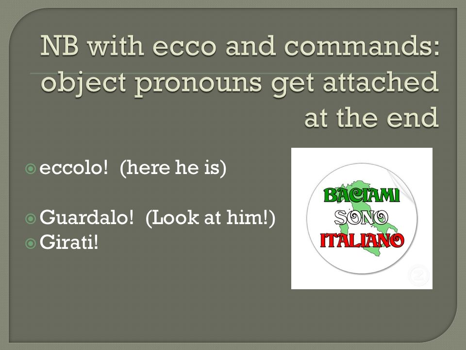 eccolo! (here he is) Guardalo! (Look at him!) Girati!