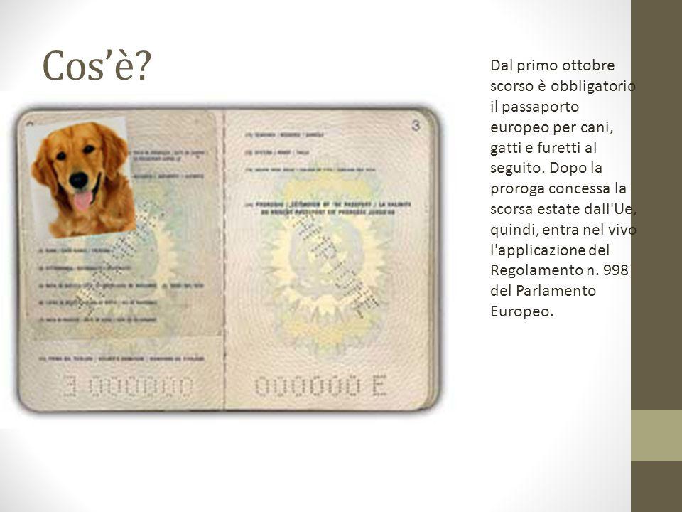 Dal primo ottobre scorso è obbligatorio il passaporto europeo per cani, gatti e furetti al seguito.