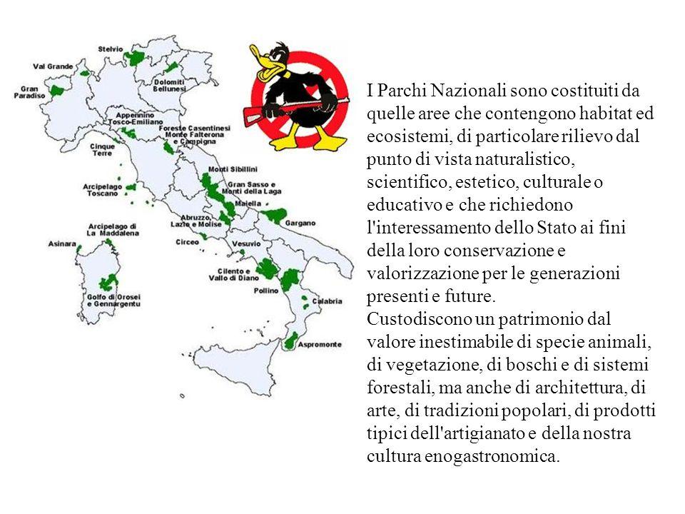 I Parchi Nazionali sono costituiti da quelle aree che contengono habitat ed ecosistemi, di particolare rilievo dal punto di vista naturalistico, scientifico, estetico, culturale o educativo e che richiedono l interessamento dello Stato ai fini della loro conservazione e valorizzazione per le generazioni presenti e future.
