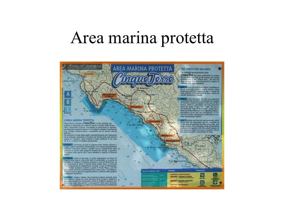 Area marina protetta