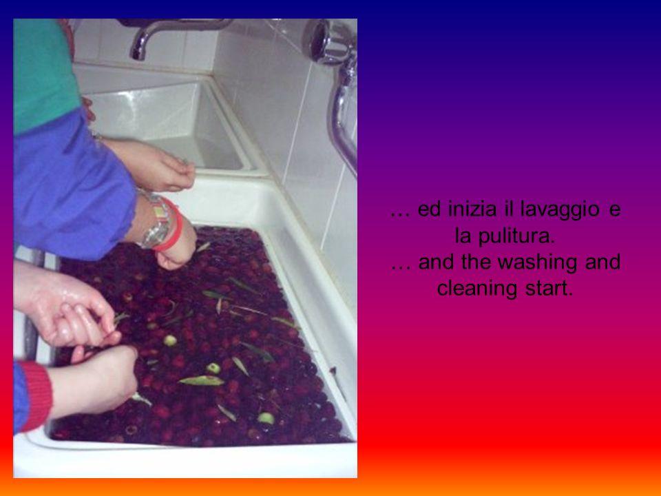 … ed inizia il lavaggio e la pulitura. … and the washing and cleaning start.