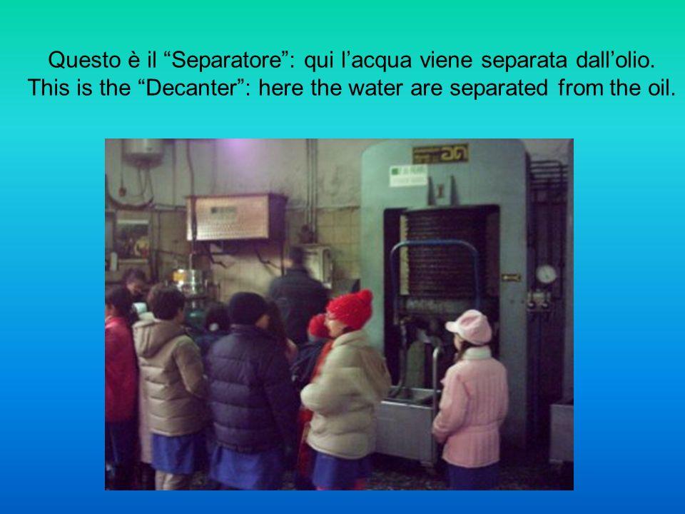 Le presse idrauliche schiacciano le pile di diaframmi pieni di pasta di olive e separano i liquidi dalla sansa.