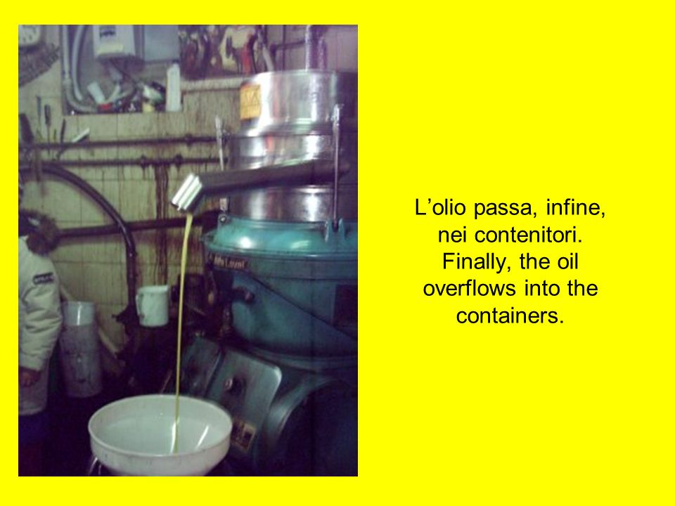 I liquidi dallapressa idraulica passano al separatore. The liquids overflow from the hydraulic press to the decanter.