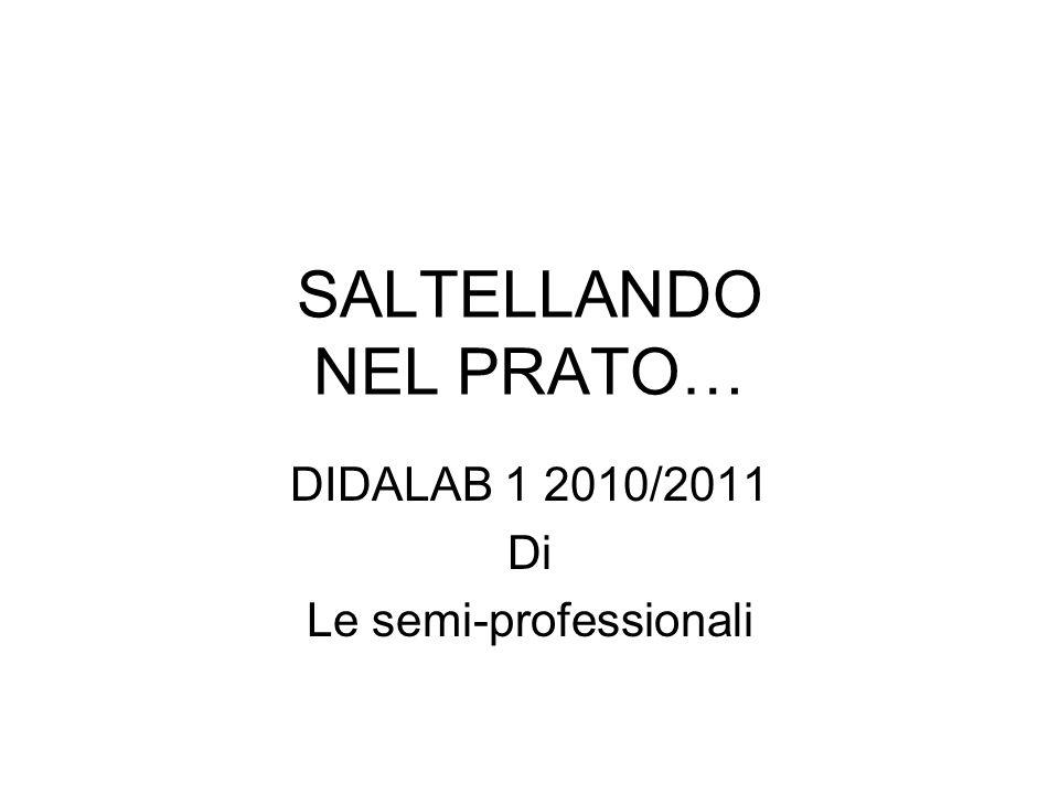 SALTELLANDO NEL PRATO… DIDALAB 1 2010/2011 Di Le semi-professionali