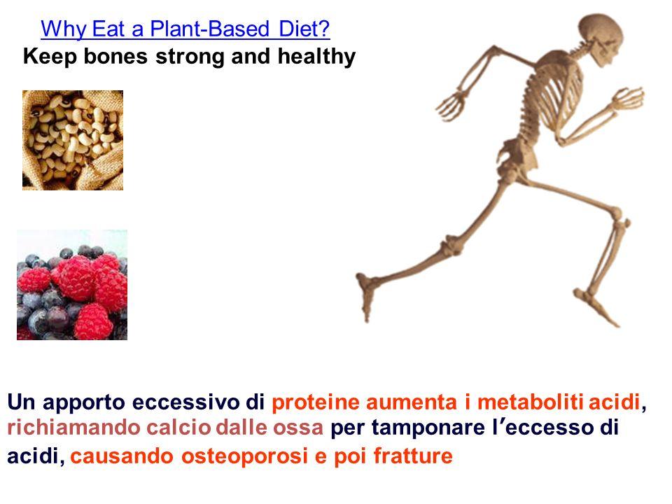 Why Eat a Plant-Based Diet? Keep bones strong and healthy Un apporto eccessivo di proteine aumenta i metaboliti acidi, richiamando calcio dalle ossa p