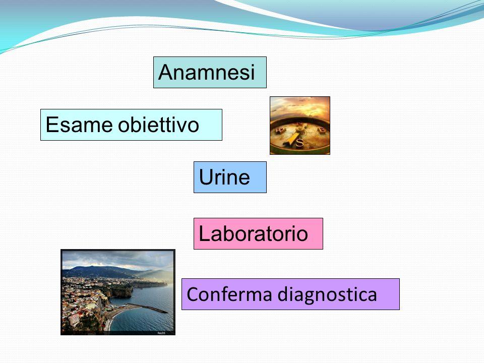 Anamnesi Esame obiettivo Laboratorio Urine Conferma diagnostica