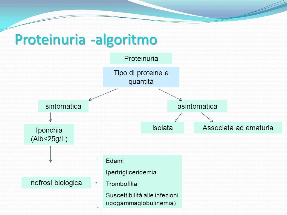 Proteinuria -algoritmo Proteinuria sintomaticaasintomatica Tipo di proteine e quantità isolataAssociata ad ematuria Iponchia (Alb<25g/L) nefrosi biologica Edemi Ipertrigliceridemia Trombofilia Suscettibilità alle infezioni (ipogammaglobulinemia)