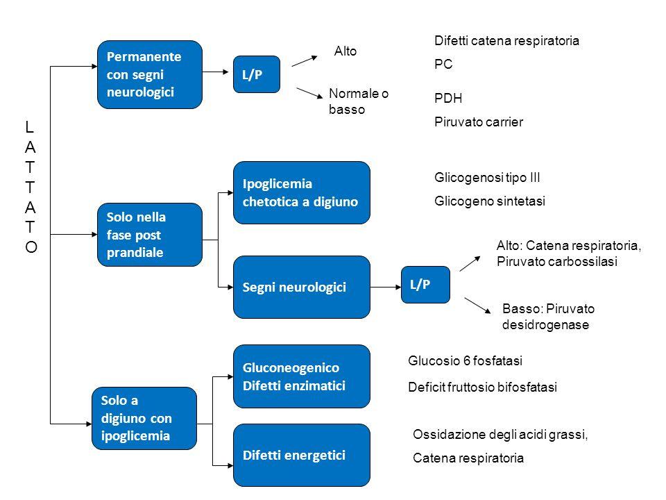 Permanente con segni neurologici Solo nella fase post prandiale Solo a digiuno con ipoglicemia Ipoglicemia chetotica a digiuno Segni neurologici Gluco