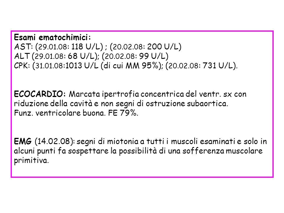 Esami ematochimici: AST: ( 29.01.08 : 118 U/L) ; ( 20.02.08 : 200 U/L) ALT ( 29.01.08 : 68 U/L); ( 20.02.08 : 99 U/L) CPK: ( 31.01.08 :1013 U/L (di cu