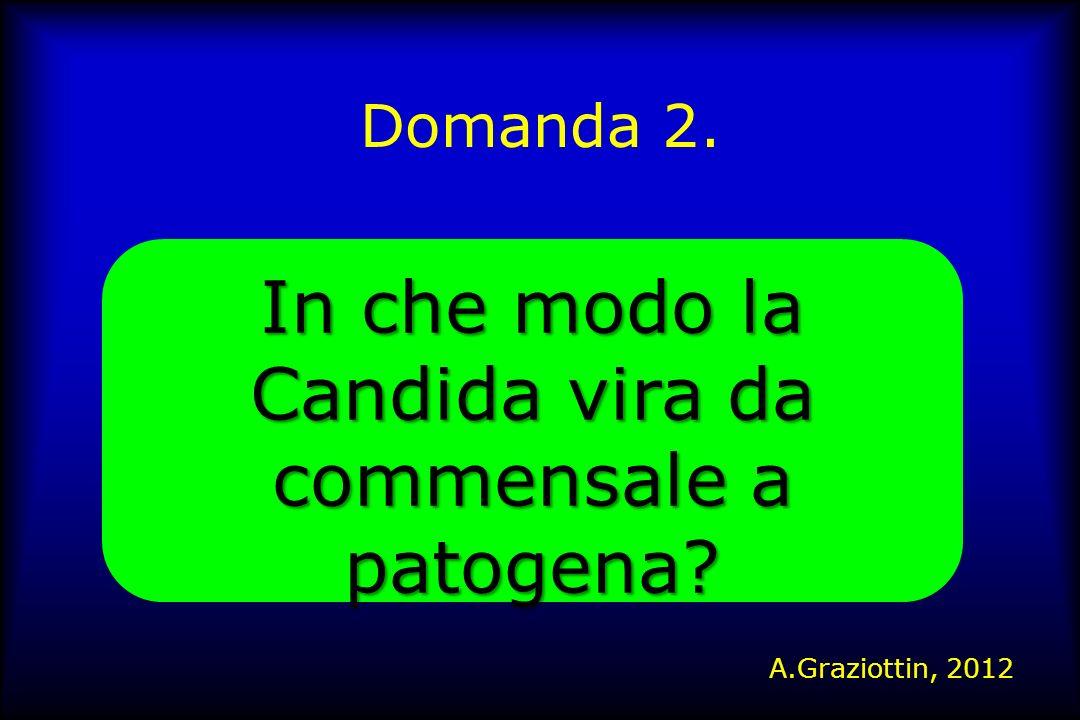 Domanda 2. In che modo la Candida vira da commensale a patogena? A.Graziottin, 2012