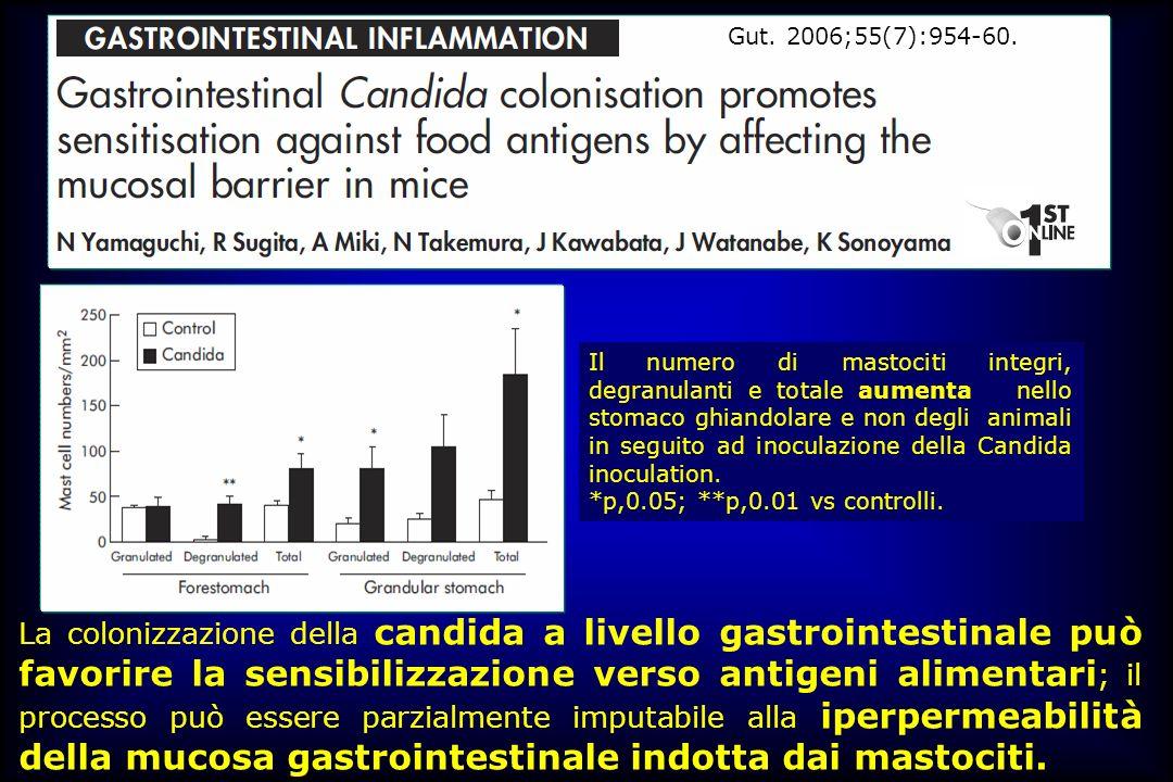 Il numero di mastociti integri, degranulanti e totale aumenta nello stomaco ghiandolare e non degli animali in seguito ad inoculazione della Candida i