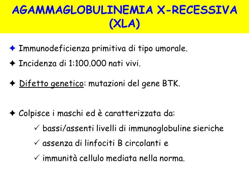 Immunodeficienza primitiva di tipo umorale. Incidenza di 1:100.000 nati vivi. Difetto genetico: mutazioni del gene BTK. Colpisce i maschi ed è caratte