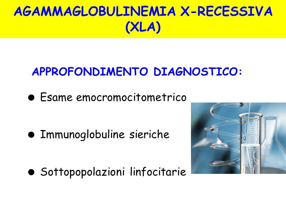Esame emocromocitometrico Immunoglobuline sieriche Sottopopolazioni linfocitarie APPROFONDIMENTO DIAGNOSTICO: AGAMMAGLOBULINEMIA X-RECESSIVA (XLA)