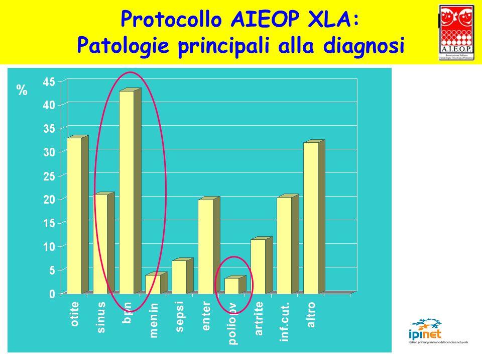 Protocollo AIEOP XLA: Patologie principali alla diagnosi %