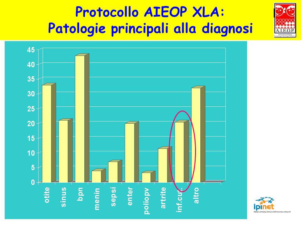 % Protocollo AIEOP XLA: Patologie principali alla diagnosi