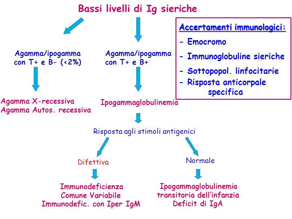 Bassi livelli di Ig sieriche Immunodeficienza Comune Variabile Immunodefic. con Iper IgM Agamma/ipogamma con T+ e B- (<2%) Agamma X-recessiva Agamma A