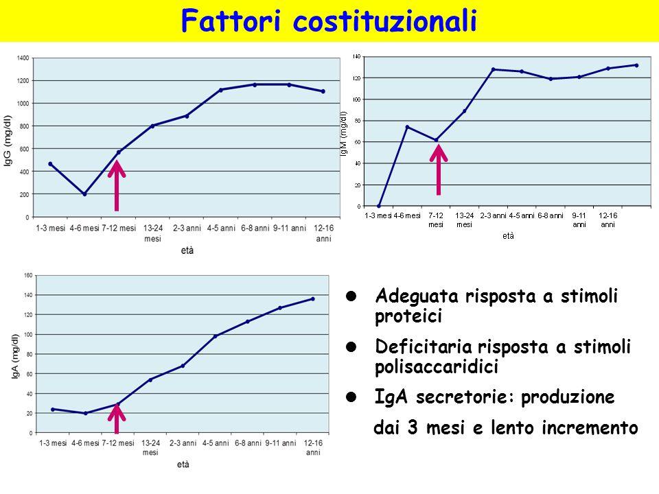 Adeguata risposta a stimoli proteici Deficitaria risposta a stimoli polisaccaridici IgA secretorie: produzione dai 3 mesi e lento incremento