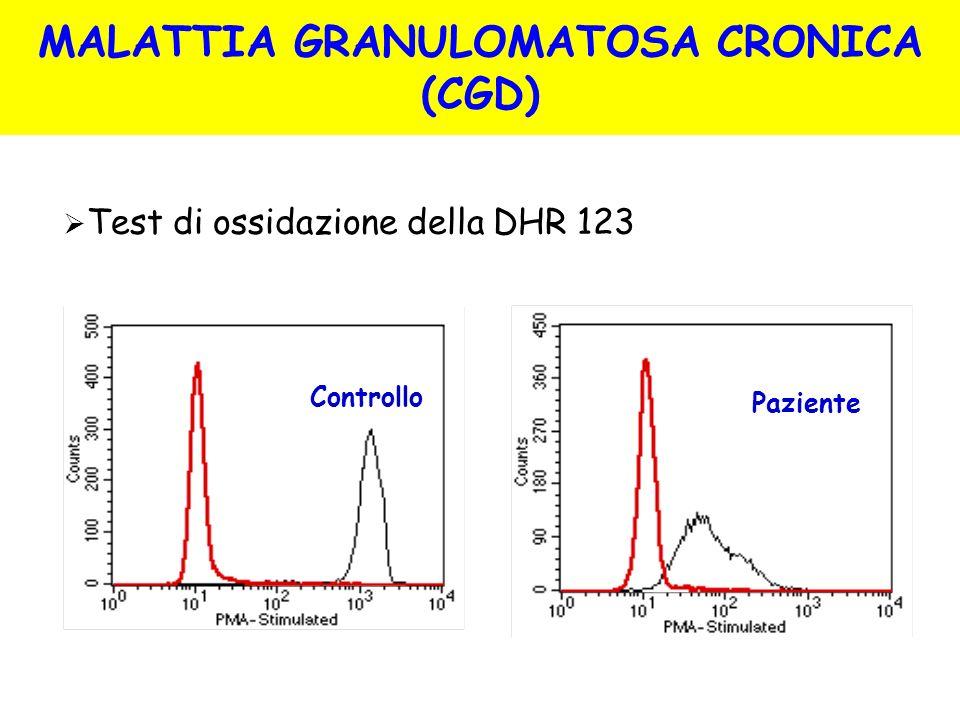 Test di ossidazione della DHR 123 Controllo Paziente MALATTIA GRANULOMATOSA CRONICA (CGD)