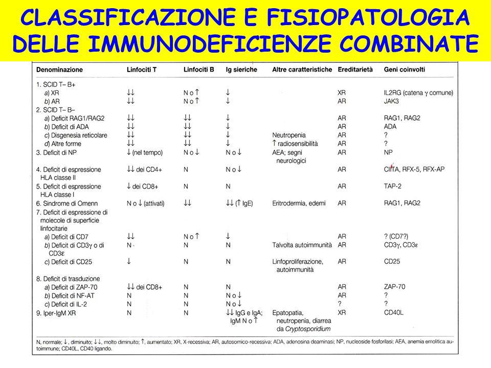 CLASSIFICAZIONE E FISIOPATOLOGIA DELLE IMMUNODEFICIENZE COMBINATE