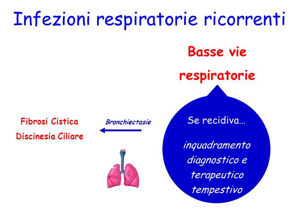 Basse vie respiratorie Infezioni respiratorie ricorrenti Bronchiti Wheezing Bronchioliti Polmoniti Pleuriti Se recidiva… inquadramento diagnostico e t