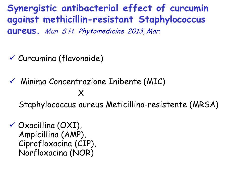 Curcumina (flavonoide) Minima Concentrazione Inibente (MIC) X Staphylococcus aureus Meticillino-resistente (MRSA) Oxacillina (OXI), Ampicillina (AMP),