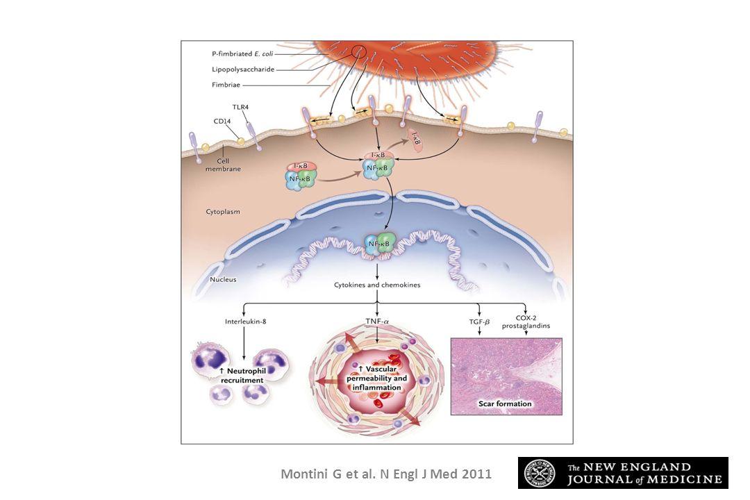 Montini G et al. N Engl J Med 2011