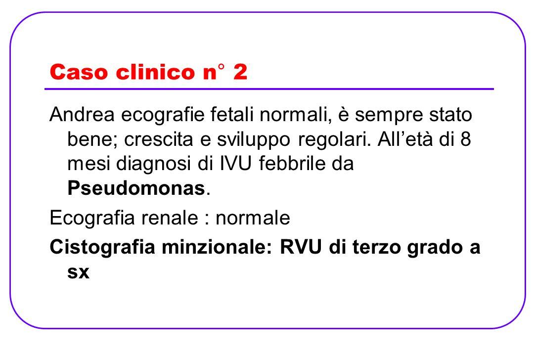 Caso clinico n° 2 Andrea ecografie fetali normali, è sempre stato bene; crescita e sviluppo regolari. Alletà di 8 mesi diagnosi di IVU febbrile da Pse