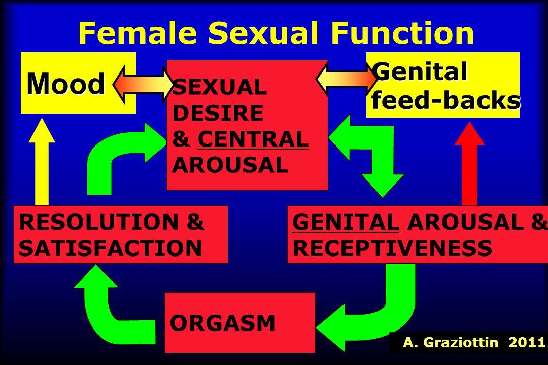 ANSIA E DEPRESSIONE Tipo di dolore AnsiaDepressione Dismenorrea OR=2.77OR=2.59 Non sensuality:OR=8.12 Dispareunia OR=3.23OR=7.77 CPP OR=2.28OR=2.69 PTSD=OR 5.47 Psychosomatic=8.01 Pallavi Latthe et Al, Factors predisposing women to chronic pelvic pain: systematic review BMJ 332; 74-755, 2006 A.Graziottin, 2006